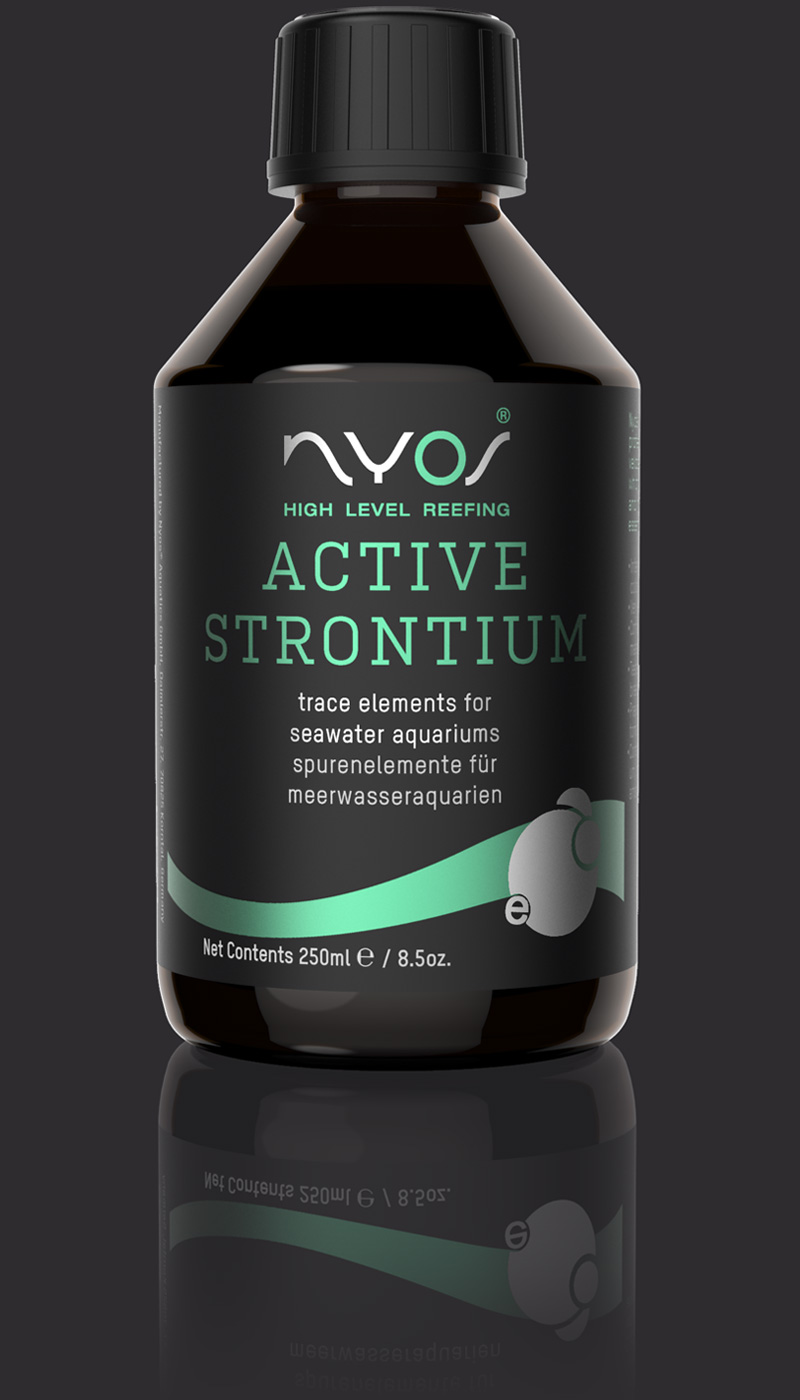 Active Strontium 800X1400 Dark